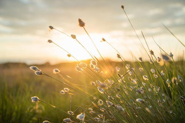 Agroturystyka - jak promować gospodarstwo agroturystyczne